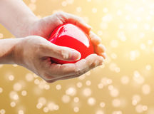 Hand holding red hart with gold Bokeh with bright light background Stock Photography