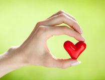 Hand holding red heart Royalty Free Stock Photo