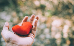Hand holding a red heart. Valentine`s day love Royalty Free Stock Photos