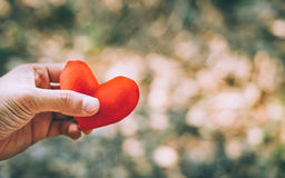 Hand holding a red heart. Valentine`s day love Stock Images