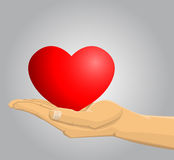 Hand holding a red heart Royalty Free Stock Photo