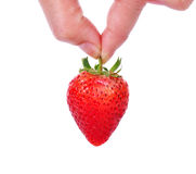 Hand holding red strawberry isolated on white Royalty Free Stock Photo