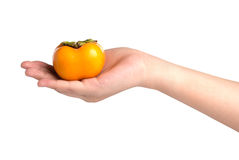 Hand holding ripe persimmon isolated on white background Stock Photo