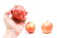 Hand holding ripe red apple Royalty Free Stock Photo
