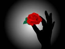 Hand holding the rose Stock Image