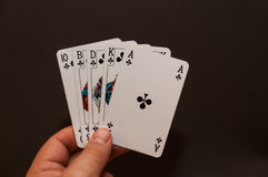 Hand holding a Royal Flush Stock Images