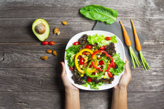 Hand holding salad bowl with fresh vegetables Royalty Free Stock Image