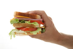 Hand holding sandwich Royalty Free Stock Photography