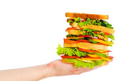 Hand holding sandwich isolated Stock Photos