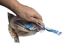 A hand is holding a sea shell with money white. Isolated object, the money of different denominations Stock Image