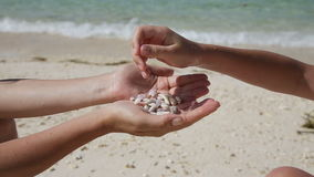 Hand holding seashells on the beach. Child hand pours in his mother's hands seashells.Hands holding seashells and pour them.In the background, a tropical sea stock video