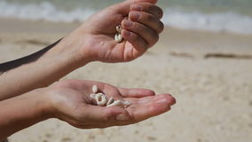 Hand holding seashells on the beach. Hands holding seashells and pour them.In the background, a tropical sea with waves and sand.Travel concept.Family,summer stock video