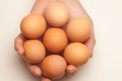 Hand holding seven eggs Royalty Free Stock Images