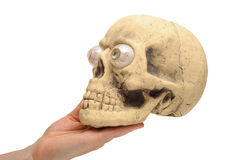 Hand holding Skull Stock Images