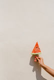 Hand holding slice of watermelon Stock Photos