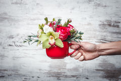 Hand holding Small red vase with bouquet of flowers on gray space for text Stock Photos