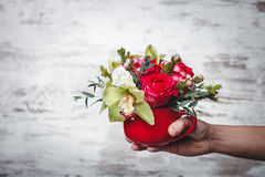 Hand holding Small red vase with bouquet of flowers on gray space for text Stock Photo