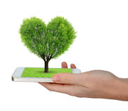 Hand holding a smartphone with a tree in the shape of heart. On white background Stock Image