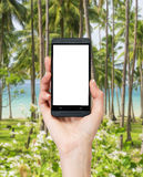 A hand is holding a smartphone with white copy space screen. Stock Photos
