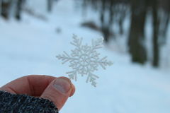 hand holding a snowflake Royalty Free Stock Photography