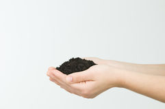 Hand holding soil Stock Photos