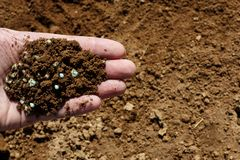 Hand holding soil with fertilizer on the ground. Stock Photography