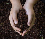 Hand holding soil surface Royalty Free Stock Image