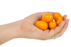 Free Hand Holding Some Kumquat Fruits Stock Image - 13424361