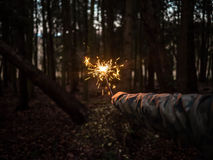 Hand holding sparkler in woods Stock Photography