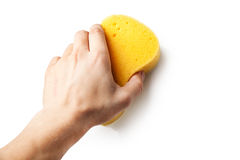Hand holding a sponge Royalty Free Stock Image