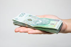 Hand holding stack of 100 zl banknotes isolated Stock Photo