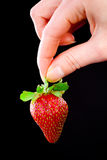 Hand holding a strawberry. Stock Photos
