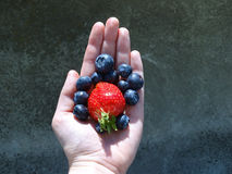 A hand holding strawberry and blueberries Royalty Free Stock Image