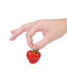 Hand holding a strawberry. Royalty Free Stock Image