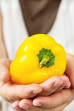 Hand holding sweet pepper Royalty Free Stock Photo