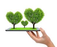 Hand holding tablet computer with trees in the shape of heart Royalty Free Stock Photography