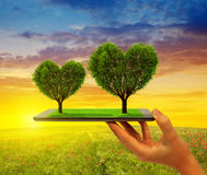 Hand holding tablet computer with trees in the shape of heart Royalty Free Stock Photo