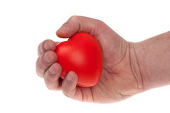 Hand holding and taking care of a red heart. isolated white Royalty Free Stock Image