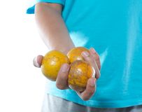 Hand holding tangerine Stock Images
