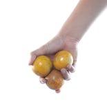 Hand holding tangerine Stock Photos