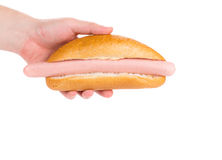 Hand holding tasty hot dog. Royalty Free Stock Photography