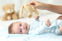 Hand holding teddy and baby looking at you. Mother hand holding a teddy and her baby looking at you on a bed Royalty Free Stock Photo