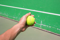 Hand holding tennis ball Stock Images