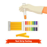Hand holding test tube with pH indicator Stock Photo