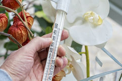 Hand holding thermometer Stock Image