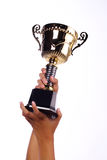 A hand holding a throphy Royalty Free Stock Image