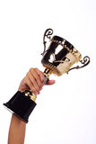 A hand holding a throphy. Isolated in white background Stock Photos