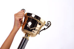A hand holding a throphy Stock Photography