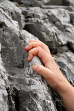 Hand holding tight on a rock. Closeup of a female Caucasian hand climbing up on a mountain Stock Images