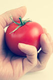 Hand holding a tomato Royalty Free Stock Photo